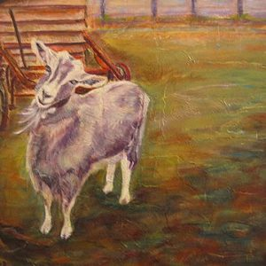 """Cindy Toggenburger geit""  - Acryl op paneel - 50 x 70 cm"